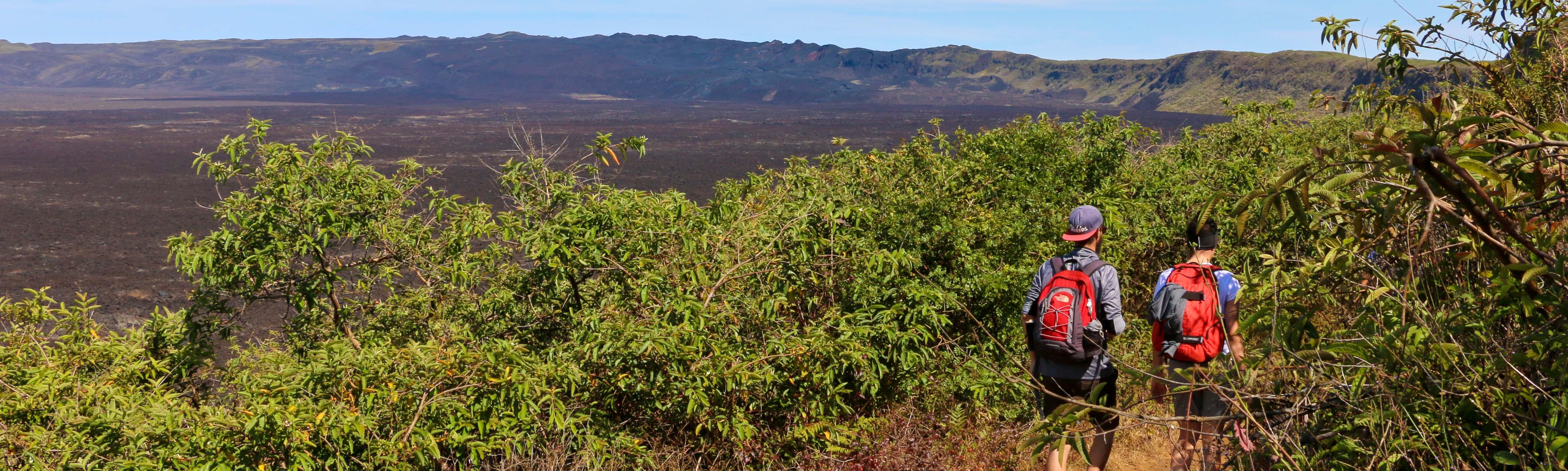 Ein gut ausgebauter Wanderweg führt dem Krater des Sierra Negra Vulkans entlang.