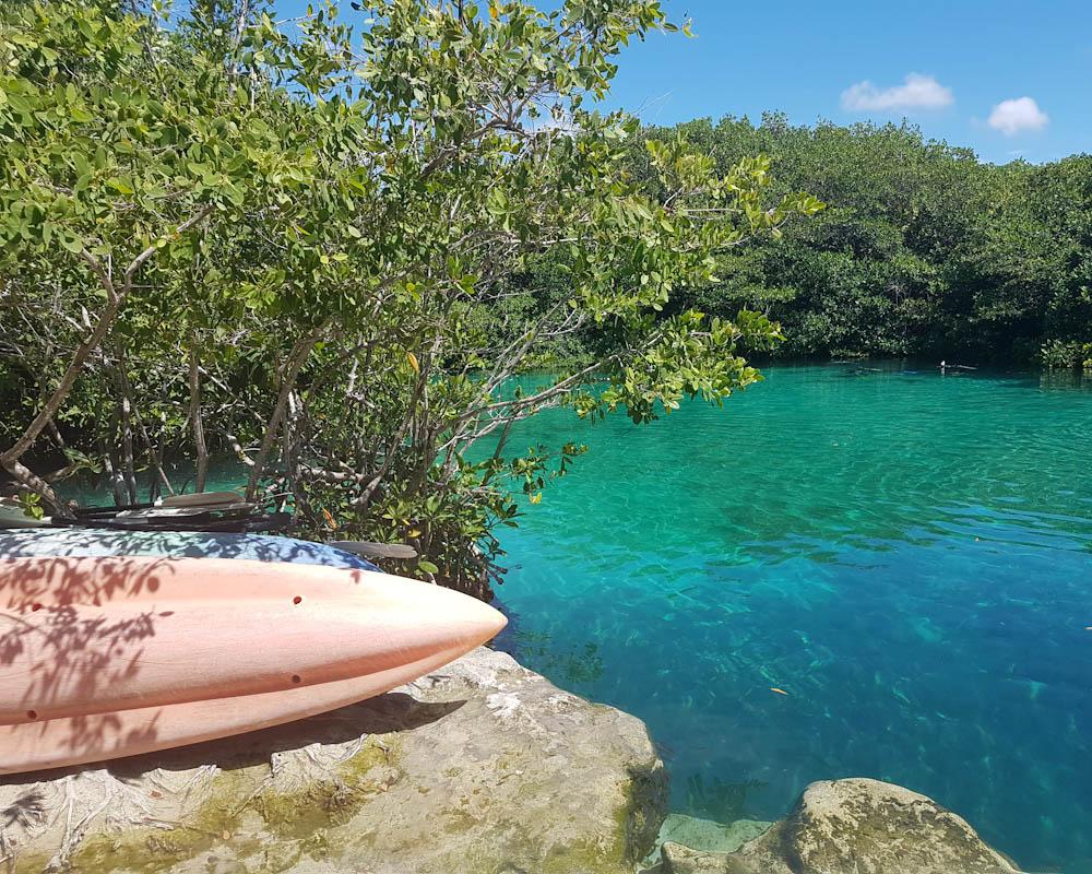 In den Cenoten von Mexiko zu tauchen ist ein bisschen wie ein Spaziergang durch den Wald: Höhlen, Felsen, knorrige Wurzeln, herunterhängende Sträucher, abgefallene Blätter. Dies aber alles Unterwasser mit einem phantastischen Lichtspiel.