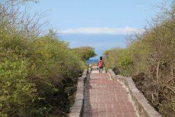 Ein super ausgebauter Weg führt an den Strand.