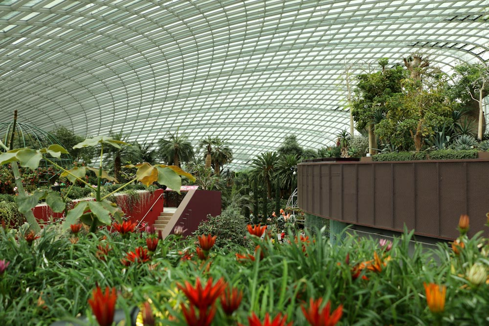 Singapore Gardens by the bay Gewächshäuser