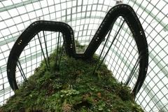 Singapore Gardens by the bay Gewächshäuser-10