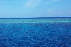 Australien-Great-Barrier-Reef-6
