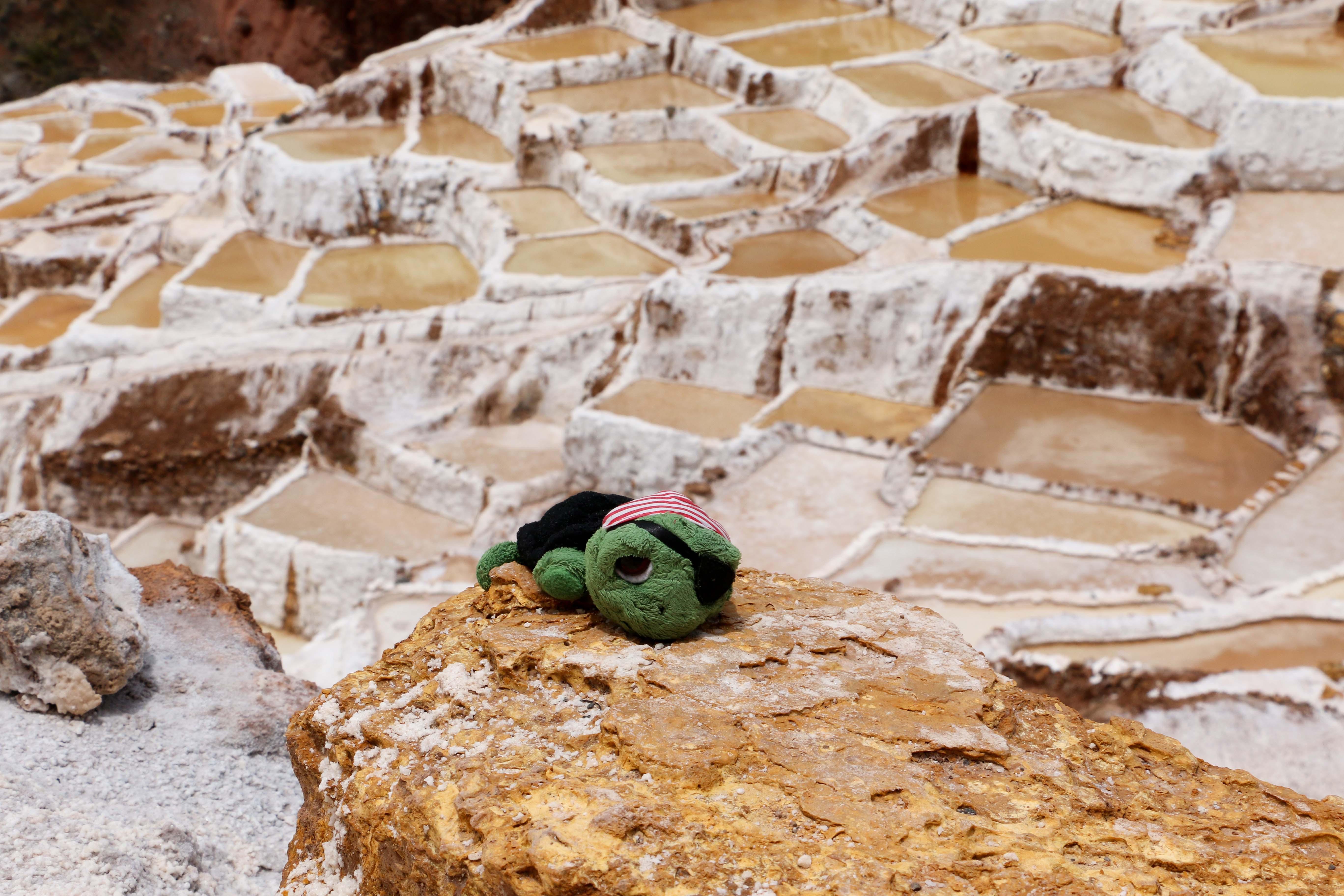 PERU: Salzterrassen von Maras