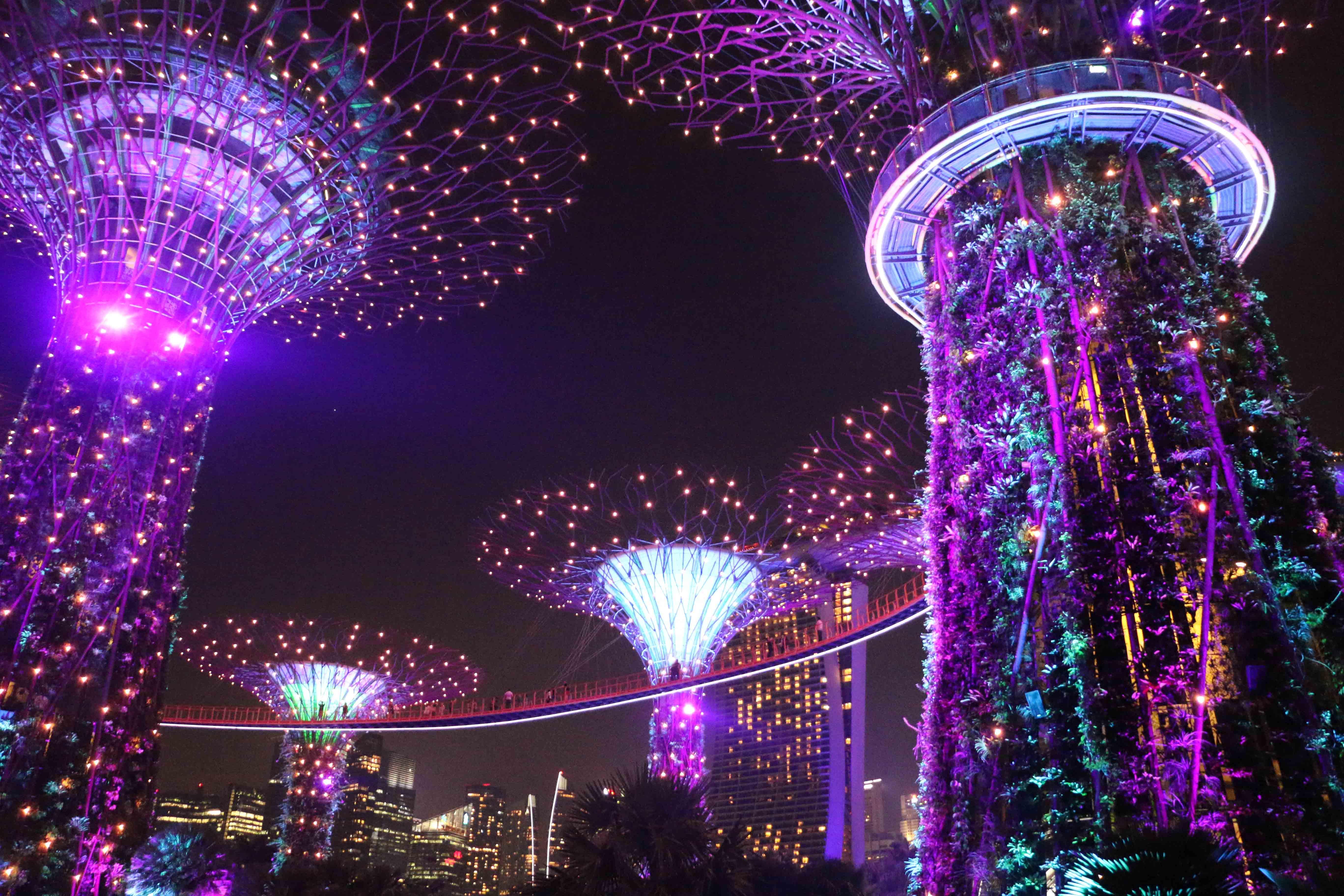 SINGAPUR: Stadt der vielen Lichter