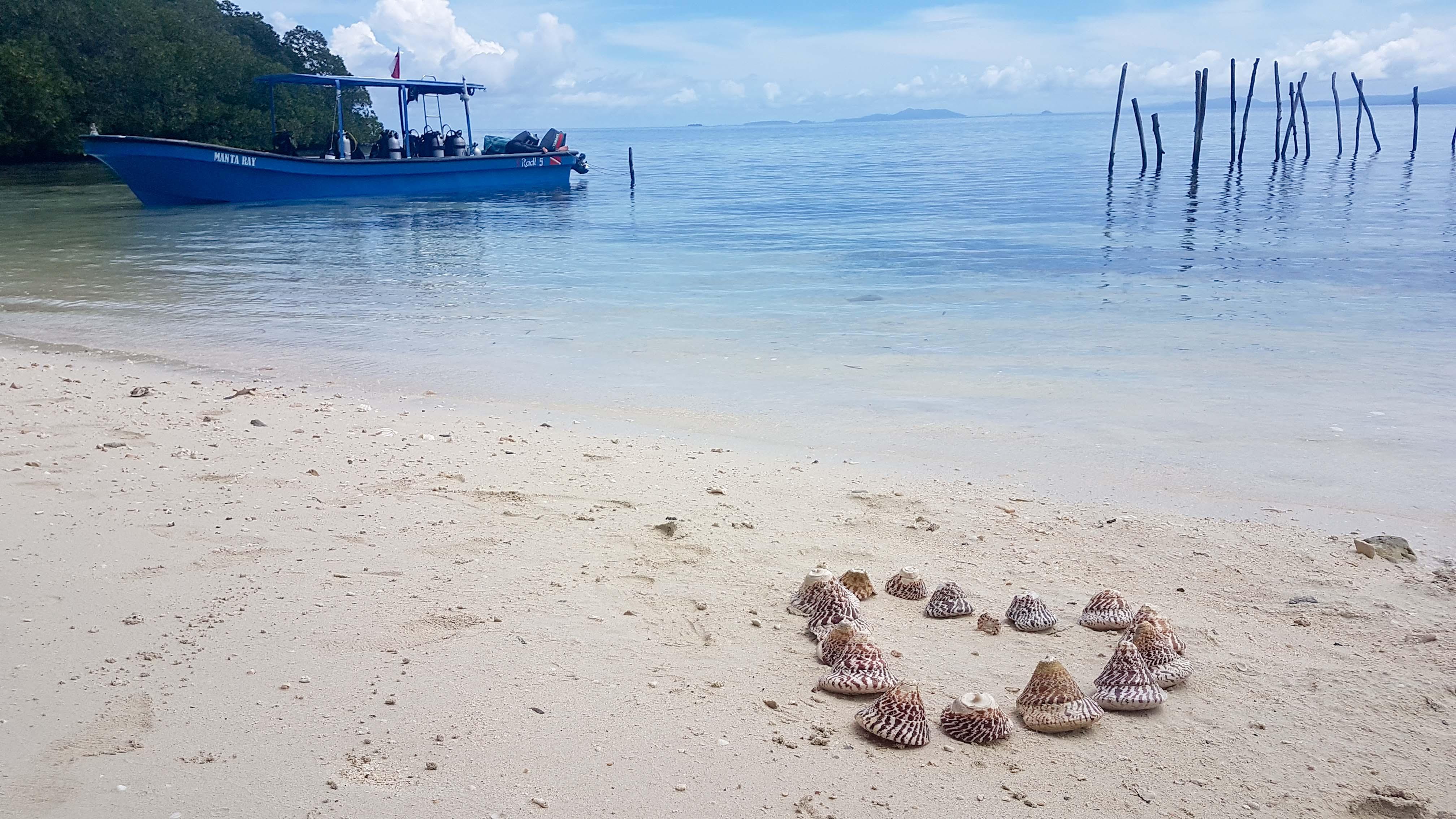 Indonesia Raja Ampat Diving-24