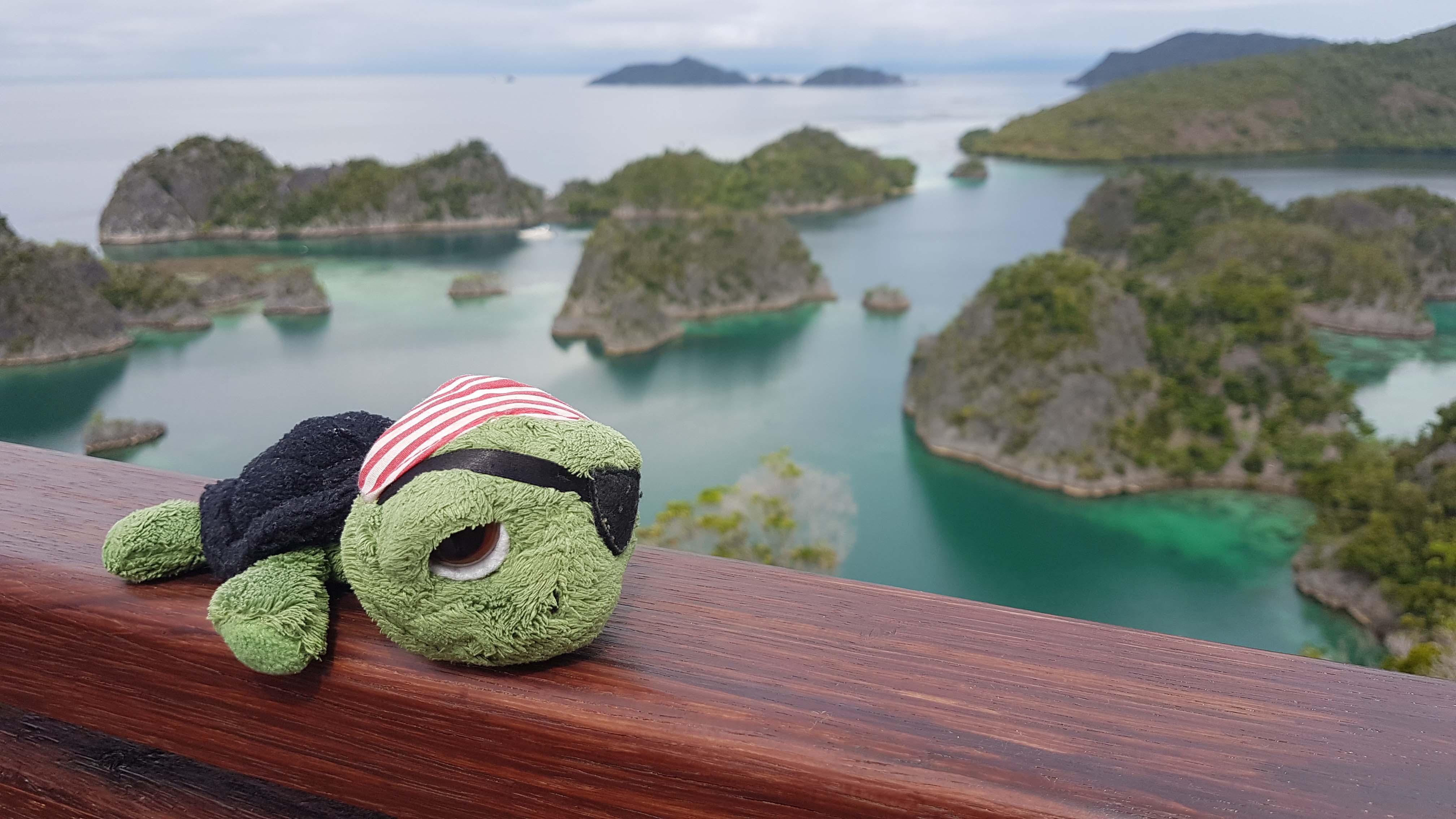 Indonesia Raja Ampat Dive Resort-4