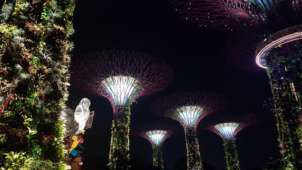 Singapore Gardens by the bay Supertrees-6